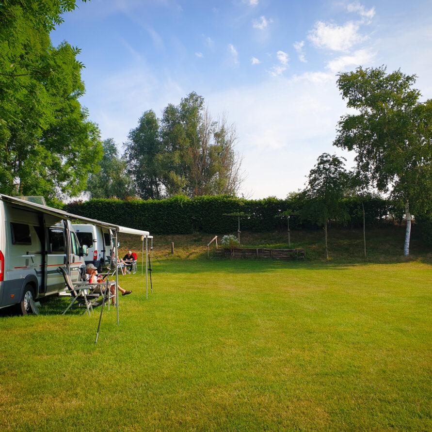 Ruime groene kampeerplaatsen op Camping de Rijnstrangen